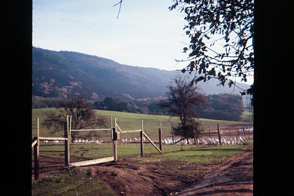 008 Oak Hills 1920 by 1280